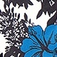Black-Blue(A08091)