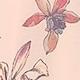 Pink(A09285)